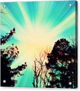 Morning Glow Acrylic Print