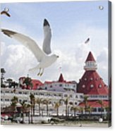 Morning Gulls On Coronado Acrylic Print