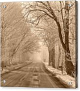 Morning Ice And Fog Acrylic Print