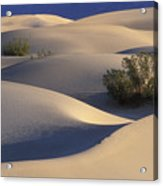Morning In Death Valley Dunes Acrylic Print