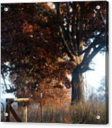 Morning In Tennessee Acrylic Print