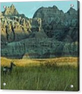 Morning In The Badlands Acrylic Print
