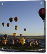 Morning Liftoff Acrylic Print