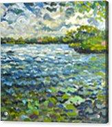 Morning Light At Lake Ida Acrylic Print