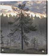 Morning Light At Saari-soljonen 7 Acrylic Print