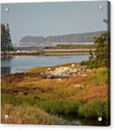 Morning Light At Schoodic  Acrylic Print