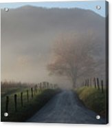 Morning Mist Acrylic Print by Christopher Ewing