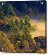 Morning Mist In The Trossachs Acrylic Print