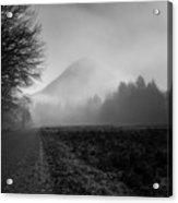 Morning Scene In Olympic National Park Acrylic Print