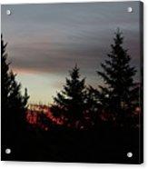Morning Silhouette 2 Acrylic Print