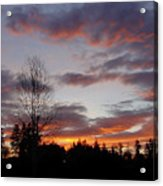 Morning Silhouetted - 1 Acrylic Print