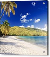 Morning Sunshine In Magens Bay Acrylic Print