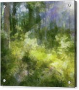 Morning Walk In The Forest Acrylic Print
