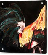 Morris Gamefowl Acrylic Print