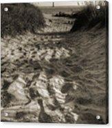 Morris Island Lighthouse Pathway Acrylic Print