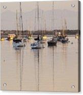 Morro Bay Boats In Early Morning Light   Acrylic Print