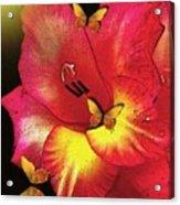 Mosaic Gladiola Acrylic Print