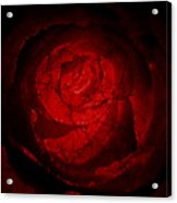 Mosaic Rose Acrylic Print
