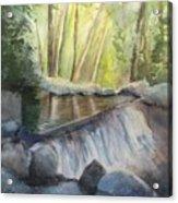 Mosquito Creek 3 Acrylic Print