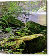 Moss Covered Boulders Acrylic Print
