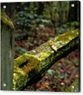 Moss Covered Fence Acrylic Print