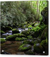 Moss Covered River Rocks Acrylic Print