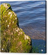 Moss Covered Rock And Ripples On The Water Acrylic Print