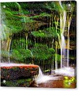 Moss Falls - 2981-2 Acrylic Print