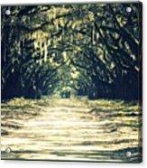 Moss Green Road Acrylic Print