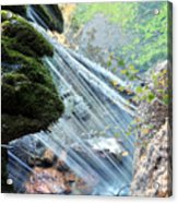 Moss On Waterfall True Color Acrylic Print