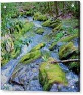 Mossy Blue Brook Acrylic Print