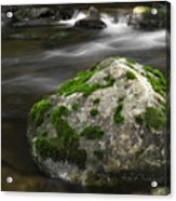 Mossy Boulder In Mountain Stream Acrylic Print