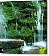Mossy Falls - 2981 Acrylic Print