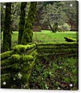 Mossy Fence 2 Acrylic Print