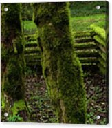 Mossy Fence Acrylic Print by Bob Christopher