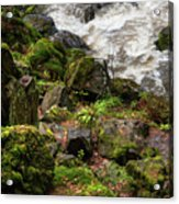 Mossy Rocks And Water Stream Acrylic Print