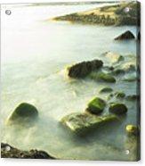 Mossy Rocks On Shoreline Acrylic Print
