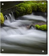 Mossy Rocks  Oregon 1 Acrylic Print