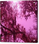 Mossy Splendor Acrylic Print