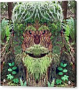 Mossman Tree Stump Acrylic Print