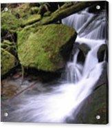 Mossy Waterfall Landscape Acrylic Print