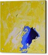 Mostly Yellow Acrylic Print