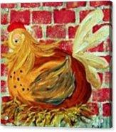 Mother Hen Acrylic Print