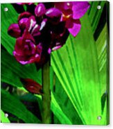 Mother Nature's Gift Acrylic Print