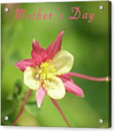 Mothers Day Card 5 Acrylic Print