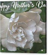 Mother's Day Gardenia Acrylic Print