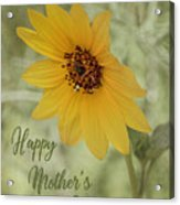 Mother's Day Sunflower Acrylic Print