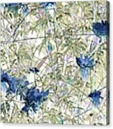 Motif Japonica No. 10 Acrylic Print