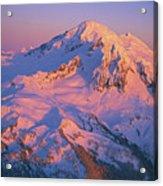 Mount Baker At Sunset Acrylic Print