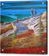 Mount Cadilac Path Acrylic Print